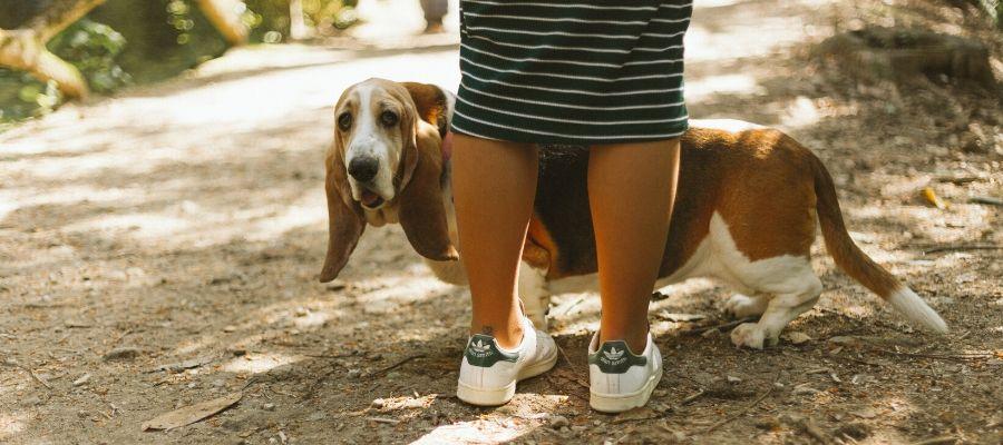 Consigli per le prime passeggiate